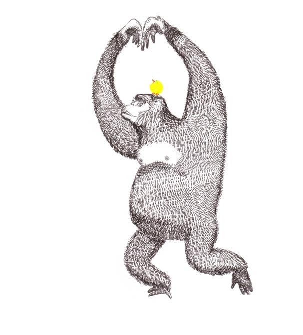 Gorilla Ballet Amanda Jane Fletcher