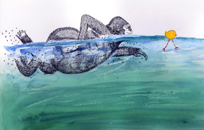swimming gorilla by Amanda Fletcher